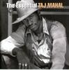 Картинка на Taj Mahal - The Essential Taj Mahal 2CD